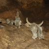 В пещере Кизил-Коба, экскурсия в Красную пещеру (Кизил-Коба)