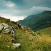 Карпаты поход: Мармароский хребет. Гора Поп-Иван
