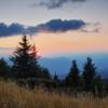Карпаты поход: вид с горы Мезыпотоки