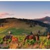 Мараморош поход: вид с горы Щавник на гору Выход с Чорногорой на заднем плане