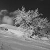 Гора Острая, фото Igor Melik. Поход по Карпатам