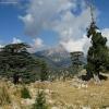 Поход по Турции: Ликийская тропа, перед штурмом горы Олимпос
