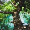 Поход в Крым: Чернореченский каньон