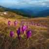 Поход на Кукул-Кострича весной