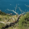 Походы Крым: урочище Аязьма (Инжир)