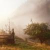 Поход по Карпатам: магия природы