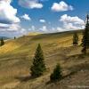 Поход по Карпатам: гора Высокий Верх