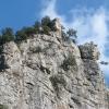 Так на камнях растут деревья. Поход по Крыму. Фото Дмитрия Киселева