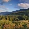 Карпаты поход: Горганы, перевал Боревка, полонина Погар