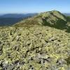 Карпаты поход: Горганы, на вершине горы Мала Сивуля