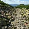 Карпаты поход: Горганские тропы