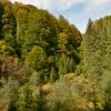 В Карпаты с палаткой: Зачарованная Долина