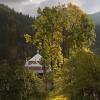 Карпаты поход в горы: Татарив (Татаров)