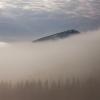 Карпаты пеший поход: гора Хомяк