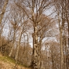 Ангарский перевал, осень. Поход Крым