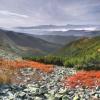 Поход Карпаты: гора Довбушанка