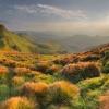Карпаты пеший поход: гора Блызныця (Близница)