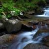 Поход Карпаты: река Белый Поток