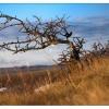 Поход в Крым: Караби