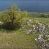 Поход в Крым: Караби яйла