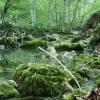 Река Бурульча. Поход в Крым