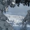 Зима в Научном. Крым