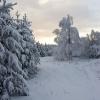 По дороге к стоянке Бойка. Крым
