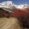 Непал: трек вокруг Манаслу, недалеко от деревни Самагаон (SamoGaon)