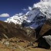 Непал: вокруг Манаслу, путь в Ларкия Пхеди (Larkya Phedi)