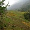 Поход по Непалу: трек вокруг Манаслу, окрестности селения Чамче (Chyamche)