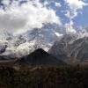Поход по Непалу: трек вокруг Манаслу, удивительные краски леса