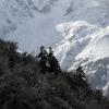 Поход по Непалу: окрестности Бимтанг (Bhimtang)