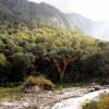Поход по Непалу: трек вокруг Манаслу, река Дудх Кхола (Dudh Khola)