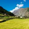 Тур в Непал: вокруг Манаслу, из Намрунг в Лхо (Ло)