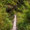 Тур в Непал: вокруг Манаслу, из Джагата в Дэнг (Денг)