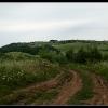 Поход по Крыму: Дорога к Партизанской поляне