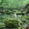 Поход по Крыму: Река Бурульча