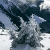 Поход на Мармарош зимой