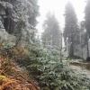 Поздняя осень на Мармарошском массиве